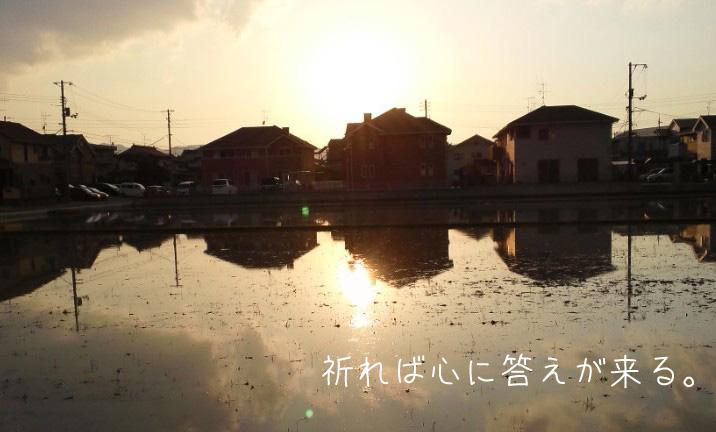 img_l1 (3)