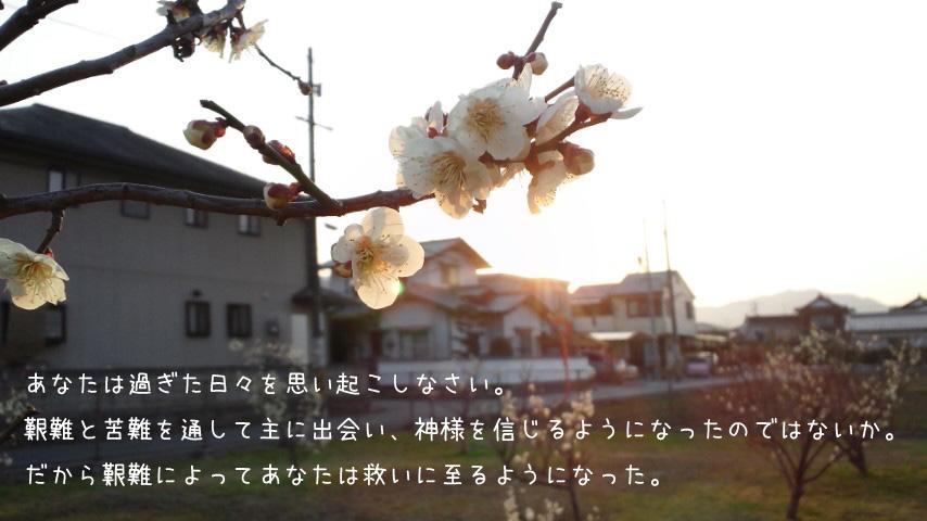 img_l10