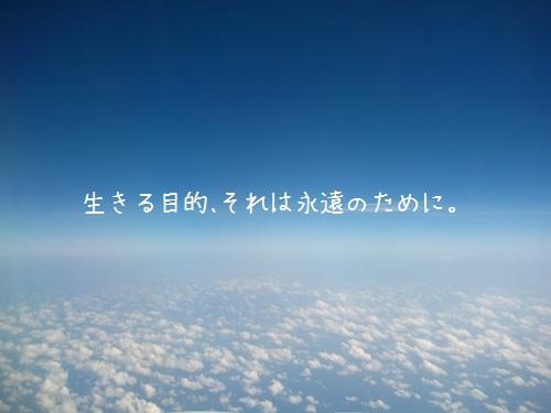img_l7 (3)