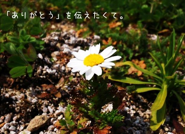 img_l9